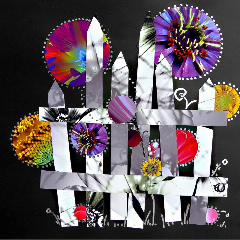 Collage von Eva Weber