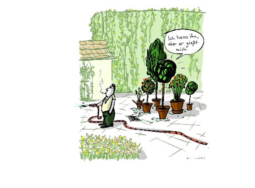 Pflanzenleben